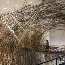 Explore Big Bambù at MFAH!