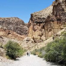 Mule Ears Overlook, Lower Burro Mesa Pour-Off, Sam Nail Ranch in Big Bend National Park